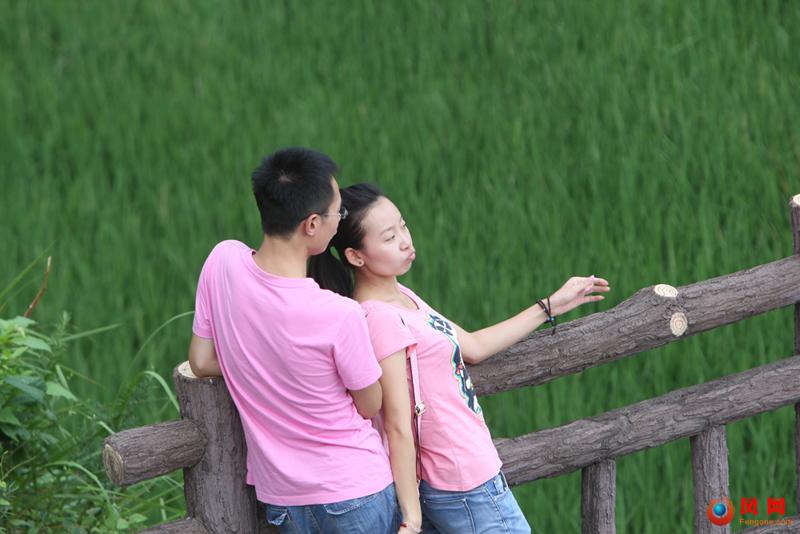 七夕情人节 紫鹊界 紫鹊界梯田