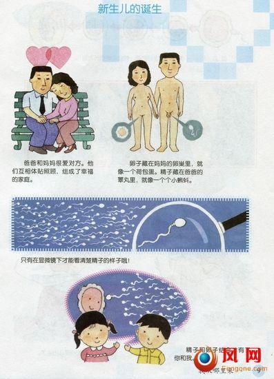 尺度大 上海 首部 小学 性别教材