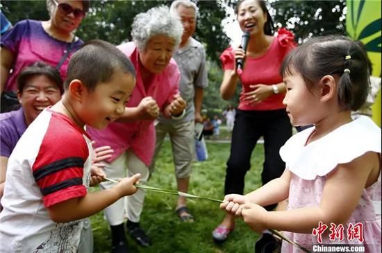 端午节 粽子 划龙舟 艾叶