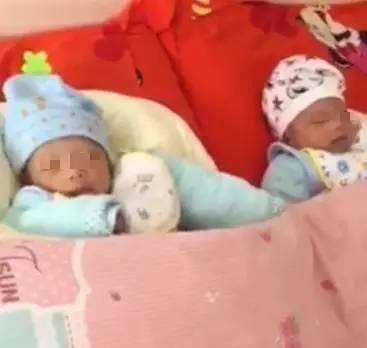 95后 双胞胎 捐器官