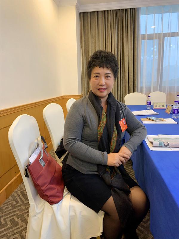 湖南艾华集团股份有限公司总裁、益阳市女企业家协会会长王安安.jpg