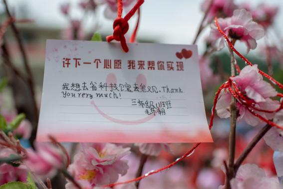 湖南省科协 公益 爱与科学 科普 主题公益活动