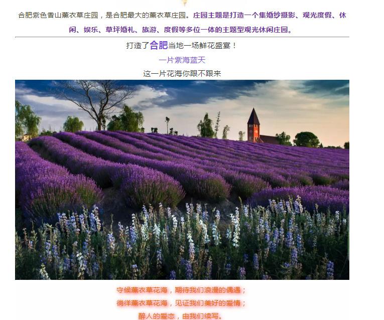 小凤侃世界 虚假宣传 虚假广告