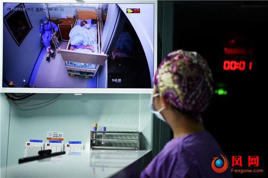 志愿者 器官捐献 生命种子 造血干细胞 湖南
