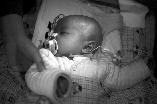 弃婴 收养婴儿 遗弃婴儿